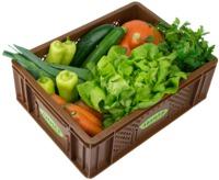 Gemüse - Kistl  klein