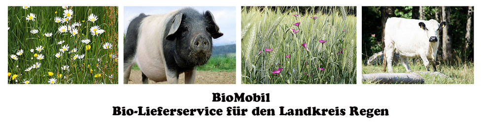 Bio-Lieferservice  BioMobil